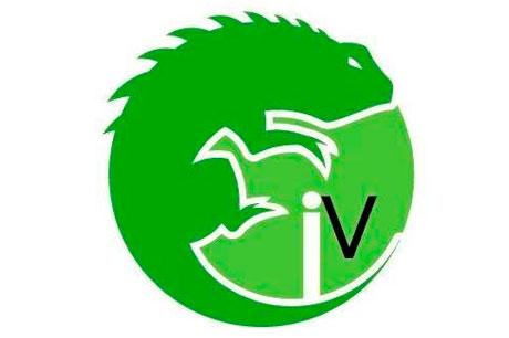 Iguana Visuales